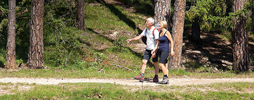 Elderly couple walking in the bush near lake