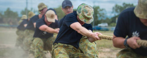 Australian Defence Force Collaboration