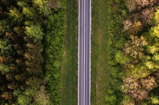 Aerial view of road through a forest