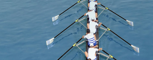 Sportsmen rowing on a sunny day