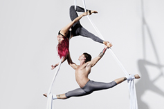 Circus artists in silks with shadows projected on white wall