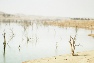 Lake during drought