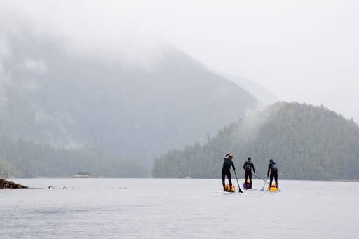 Three people paddle board in the rain in the Great Bear Rainforest