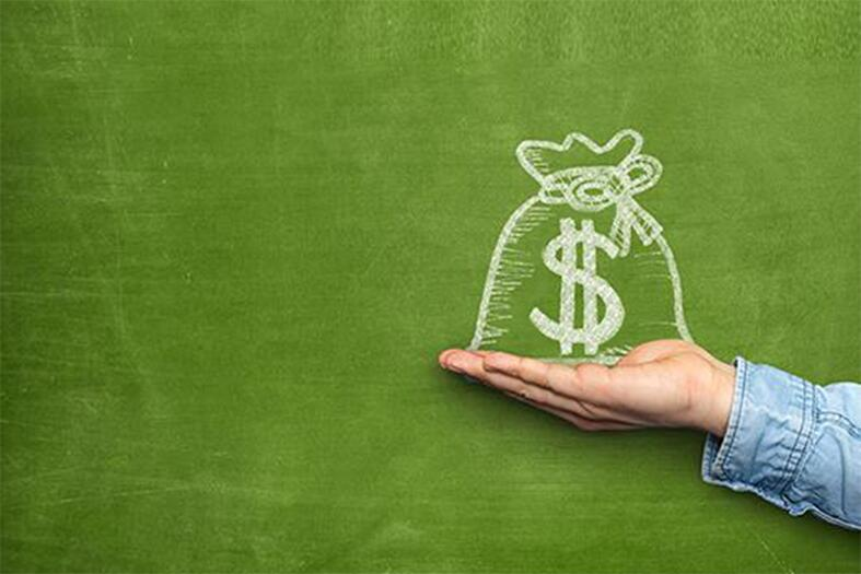 holding a money bag in hand on green background