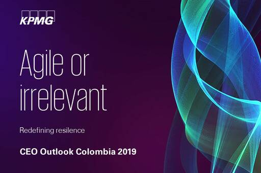 CEO Outlook 2019