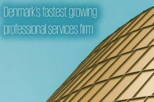 Denmark's fastest growing professional services firm