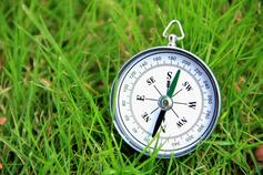 Compass in the grass