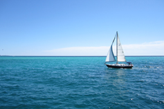 sailboat-in-blue-ocean-with-white-sail