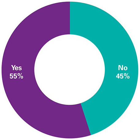 Has your company claimed an R&D tax credit in Ireland since this was introduced in 2004?  Yes 55% / No 45%