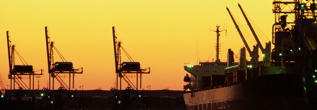 silhouette offloading grain container ship