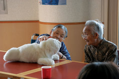 Elderly couple touching a soft toy