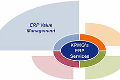 ERP Value Management