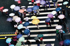 People on a street crossing holding umbrellas