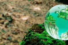 The ESG imperative for technology companies