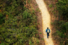 Man walking on pathway