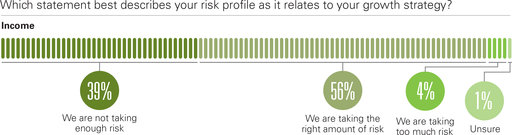 Which statement best describes your risk profile as it relates to your growth strategy? We are not taking enough risk; We are taking the right amount of risk; We are taking too much risk;