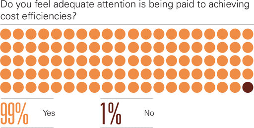 Do you feel adequate attention is being paid to achieving cost efficiencies?