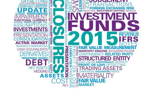 Guide to annual financial statements - Illustrative disclosures for investment funds 2015