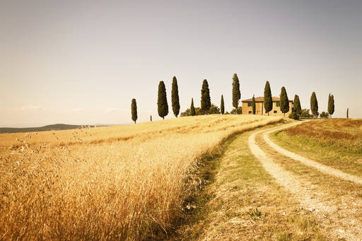 Farmhouse and rural road in val dorcia tuscany