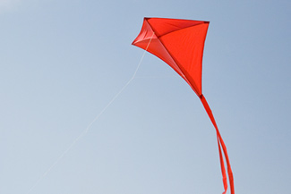 Red kite flying in the blue sky