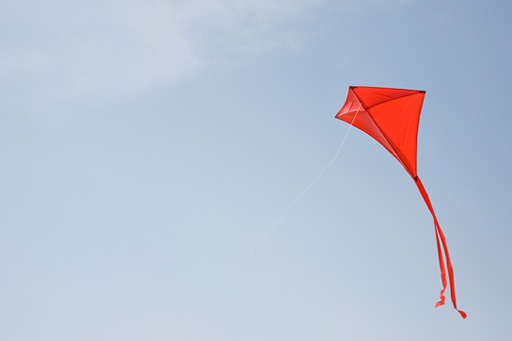 Kite flying in the air