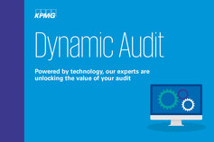 dynamic audit