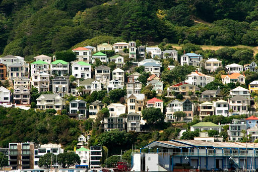 Houses on a hill, Wellington, NZ