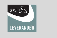 SKI supplier logo