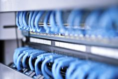 Blue Ethernet cables connected to switch