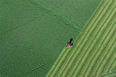 Tractor in green field