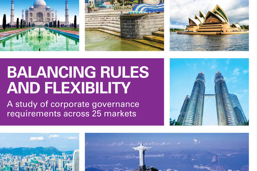 Balancing Rules and Flexibility