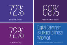 ceo outlook infographic quick facts
