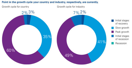 Point in the growth cycle your country and industry