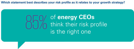 Which statement best describes your risk profile as it relates to your growth strategy?