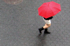 Topview of-girl with umbrella