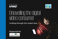 Unravelling the digital video consumer