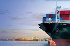 Trade and customs supply chain reconfiguration
