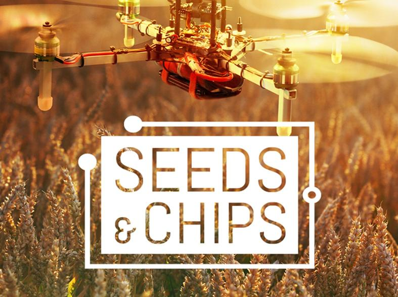 Seeds and Chips
