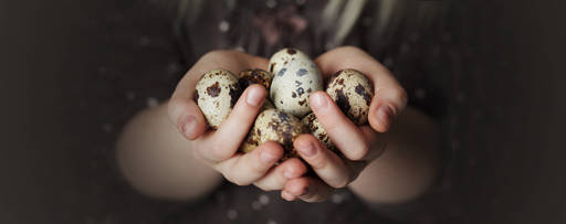 eggs-in-hands