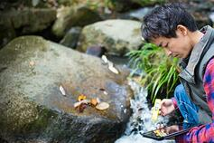 Researcher testing water quality