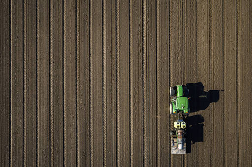 The Brexit Column: Sowing the seeds