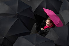 The insurance digital transformation trilogy - photo of a woman with a pink umbrella in a sea of black umbrellas