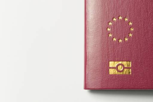 The Brexit Column: Misreading the politics is your greatest enemy - photo of an EU passport