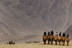 CBEST Penetration Testing - men riding camels in the desert