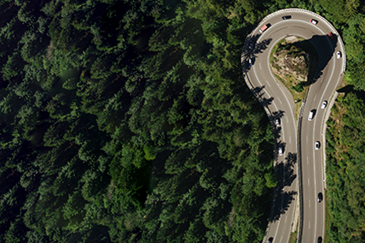 We outline how to reshape risk and resilience for the future - Arial view of road with vehicles on it and green trees around