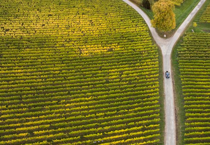 three-road-divergence-in-midst-of-a-farm-with-car