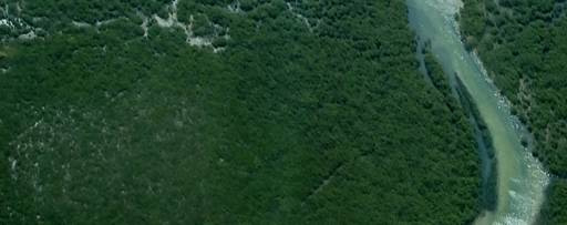 Top view of water flowing through green bushes
