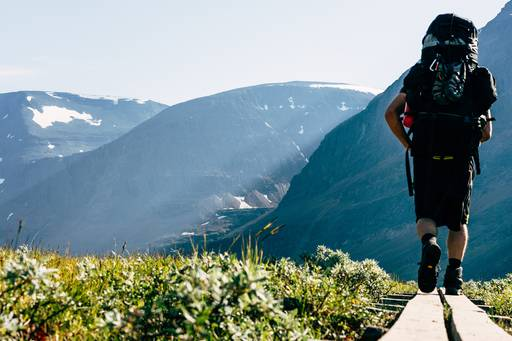 Back view of man walking down with rucksacks against mountains and grass
