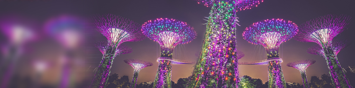 Tall towers decorated with lights and plants against night sky