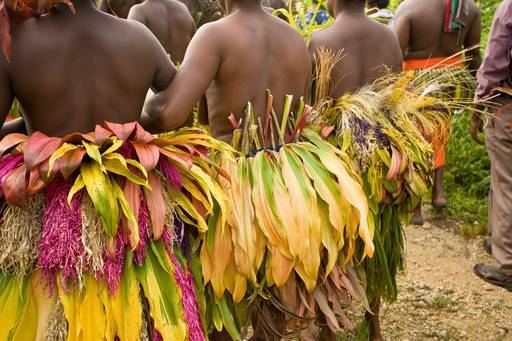 People with leaves papua new guinea